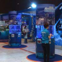 名古屋駅前に水族館!?ミッドランドスクエアで名古屋港水族館「AQUA LIVE!」が開催