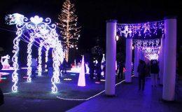 冬の名古屋観光に!デートにもクリスマスにも楽しめるイルミネーション5選 - 31d78edba78f0fc9f378e63949bd528a 260x160