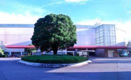 選書集団BACHセレクトのブックカフェ。トヨタ博物館内「CARS&BOOKS」 - e4b906f24c89fe47594a26baeaa2d7c1 260x160