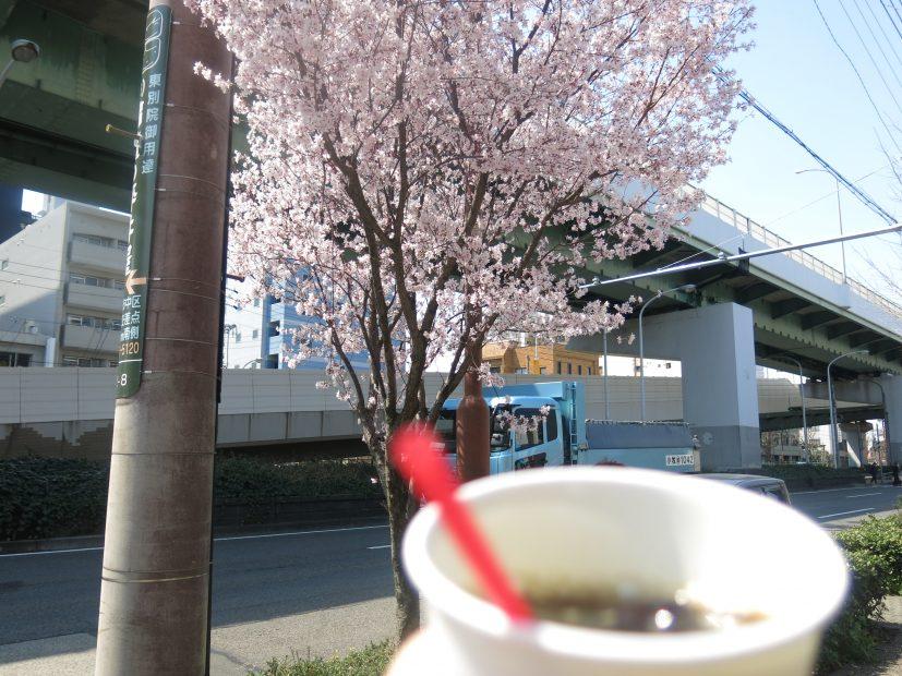 桜とお寺に囲まれてお散歩しよう。3月開催「東別院手づくり朝市」に行ってきました - IMG 4417 827x620
