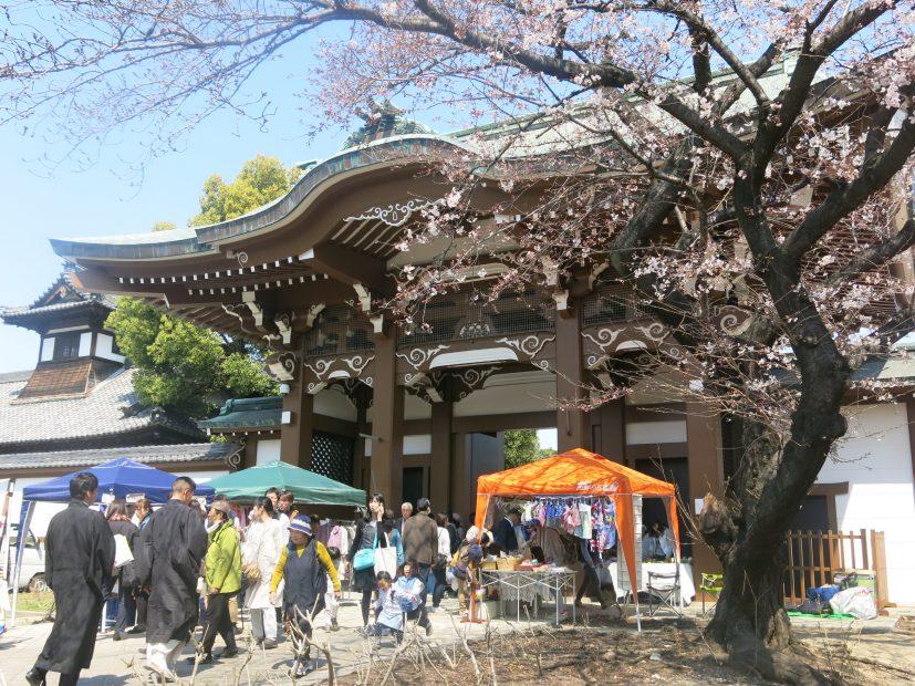 桜とお寺に囲まれてお散歩しよう。3月開催「東別院手づくり朝市」に行ってきました - IMG 4423 827x620