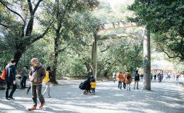 春の訪れを心と身体から感じよう。運気を呼び込むパワースポット、熱田神宮お散歩のススメ - img16 260x160