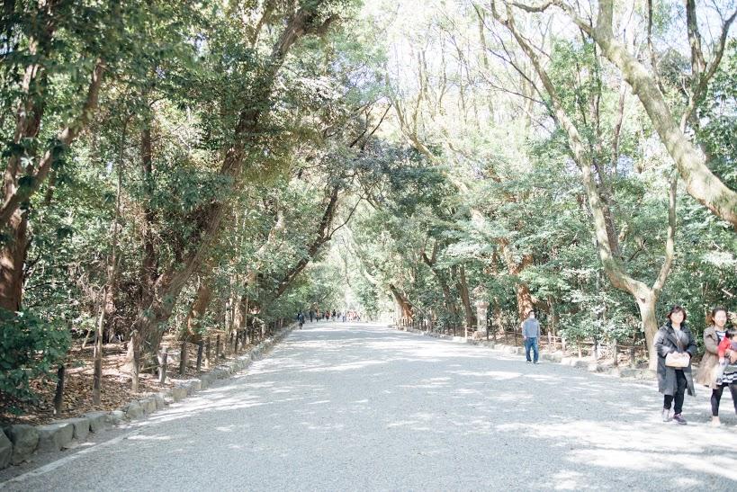 春の訪れを心と身体から感じよう。運気を呼び込むパワースポット、熱田神宮お散歩のススメ - img8