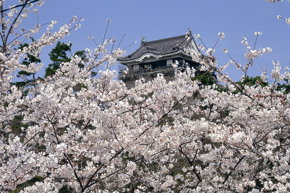 今年のお花見はどこに行く?名古屋から気軽に行ける桜の名所6選 - photo 930x620