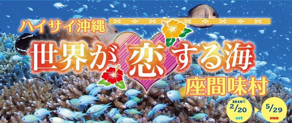 photo by http://www.nagoyaaqua.jp/