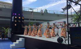 ハワイを感じる3日間「JST Nagoya HAWAII Festival」 - c94398d8955ac75d3499a94e6d1d9abf 260x160