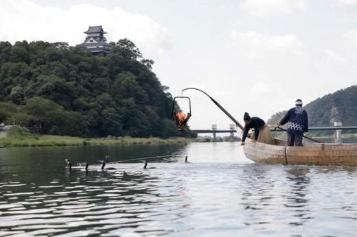 熱気を体で感じる伝統文化!木曽川うかいを犬山で体感しよう - mg 76011 520x346 520x346