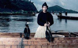 熱気を体で感じる伝統文化!木曽川うかいを犬山で体感しよう - top photo 445x340 260x160