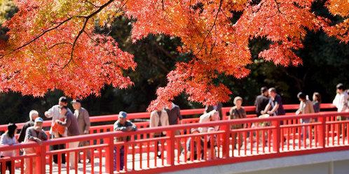 http://www.citytoyota-kankou-jp.org/spot/108/