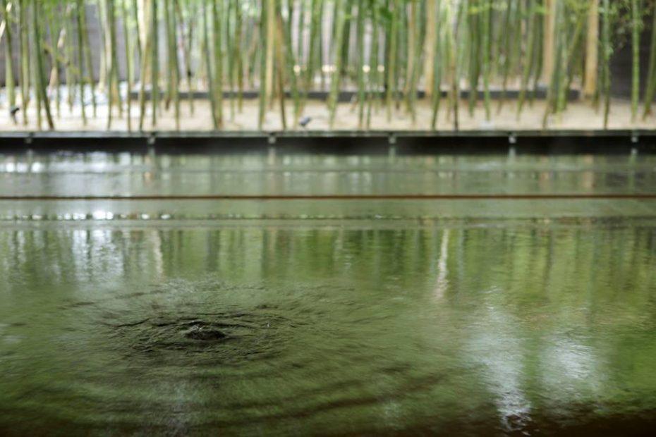 名古屋から約1時間!食も温泉もおしゃれに楽しめる避暑地「アクアイグニス」 - 11062038 1070901012939984 5869650865536085574 n 930x620