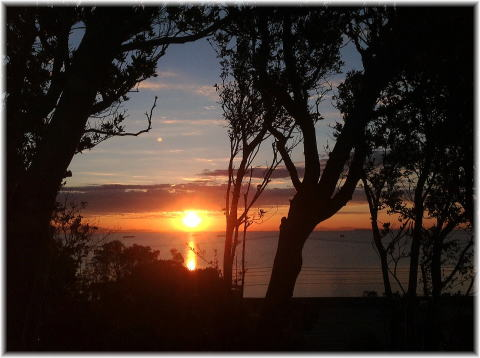 旬の果物を使ったパフェが大人気!美浜町の海が見れるカフェ「フレベール ラデュ」 - 130206 331