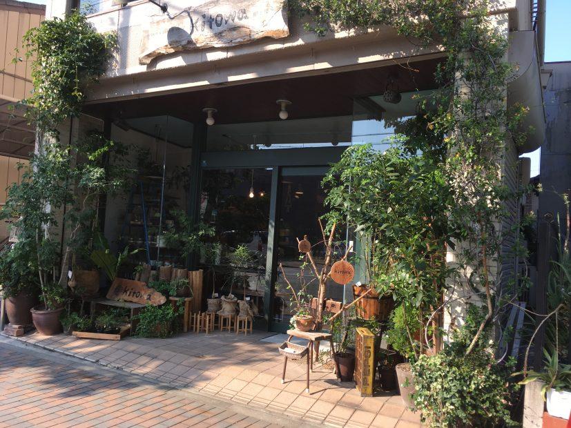 毎日の暮らしにグリーンを。千種区の雑貨と植物のお店「Kitowa(樹と環)」 - IMG 7718 4 827x620