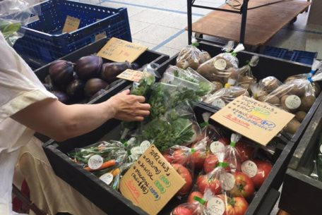 オアシス21で新鮮な野菜をゲット!毎週土曜朝「オーガニックファーマーズ朝市村」