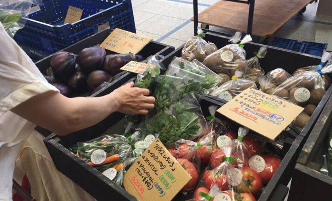 オアシス21で新鮮な野菜をゲット!毎週土曜朝「オーガニックファーマーズ朝市村」 - 14302934 1331238196906204 1216288194 n 660x400