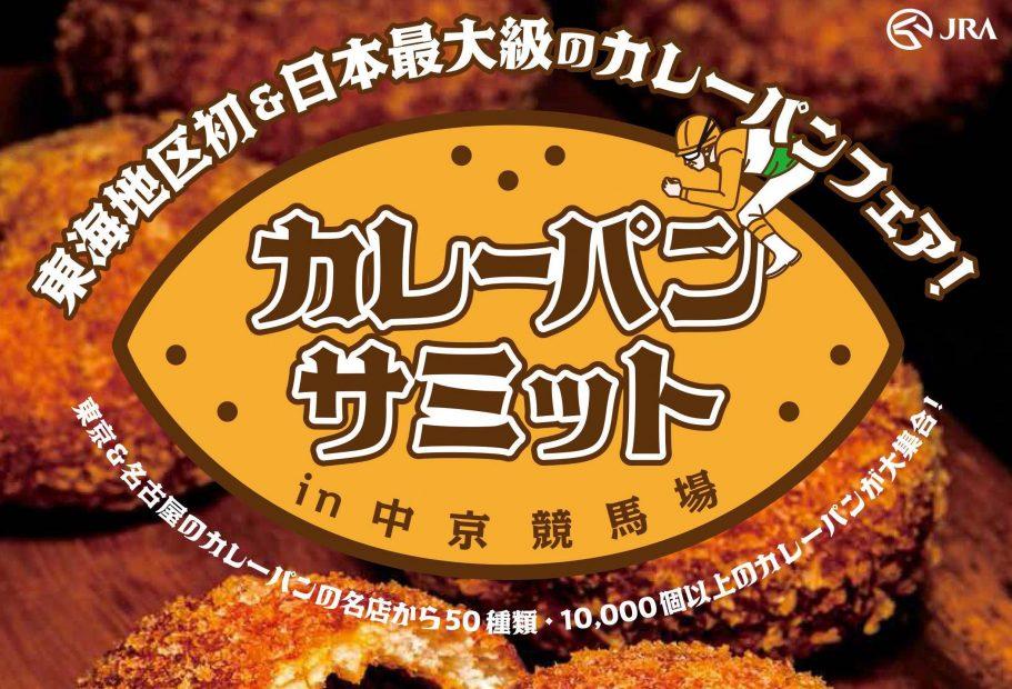 curry_A4orikomi_160902s
