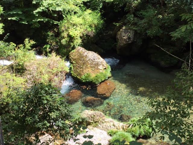 『写ルンです』で世界一簡単なフィルムカメラ体験「パシャっと山県」に行ってきました! - unnamed 2