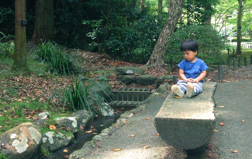 紅葉の前だからこそ植物園が面白い!子どもと一緒に東山動植物園を楽しむ方法 - 10 979x620