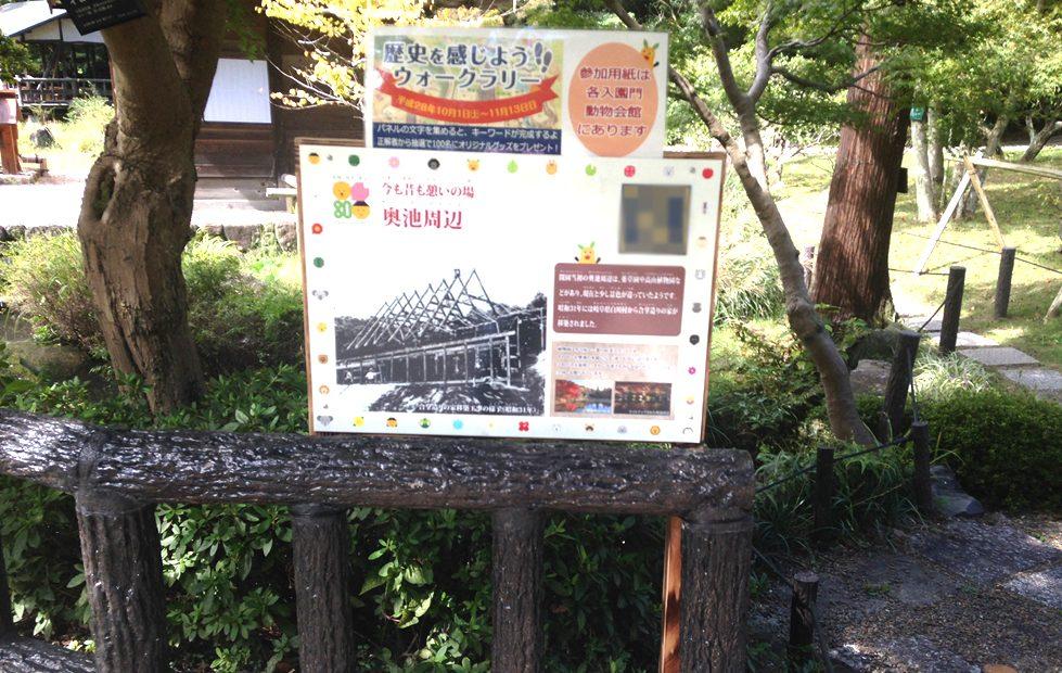 紅葉の前だからこそ植物園が面白い!子どもと一緒に東山動植物園を楽しむ方法 - 11 979x620
