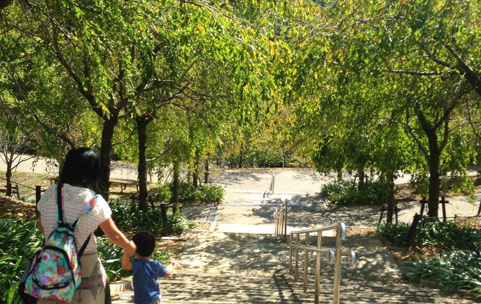 紅葉の前だからこそ植物園が面白い!子どもと一緒に東山動植物園を楽しむ方法 - 12 979x620
