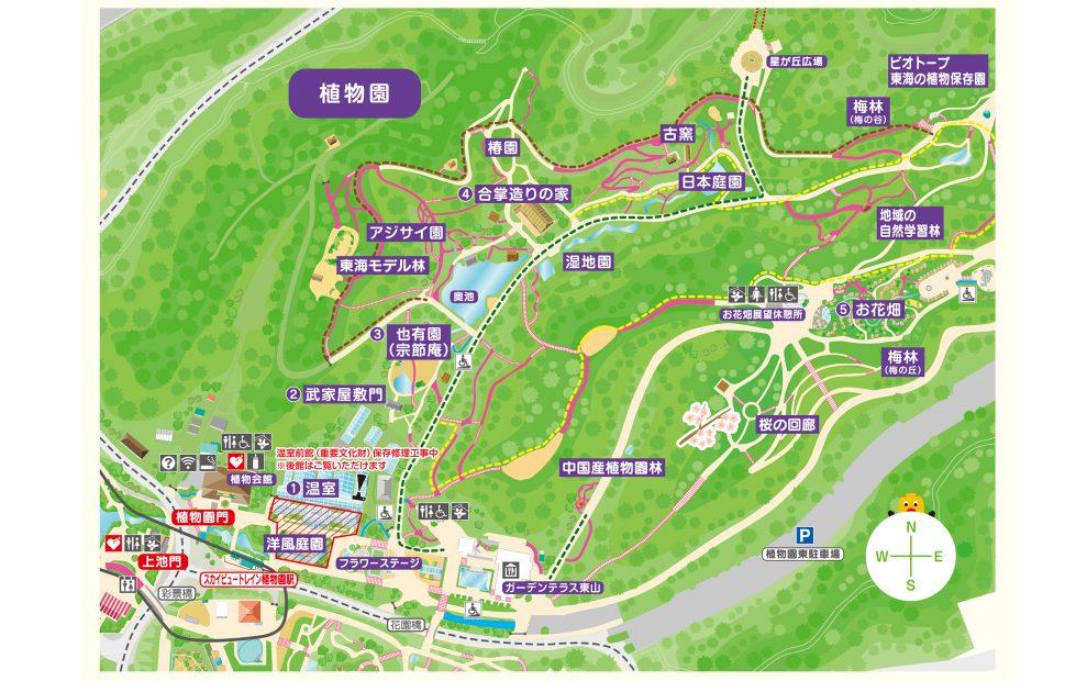 紅葉の前だからこそ植物園が面白い!子どもと一緒に東山動植物園を楽しむ方法 - 16 1 979x620