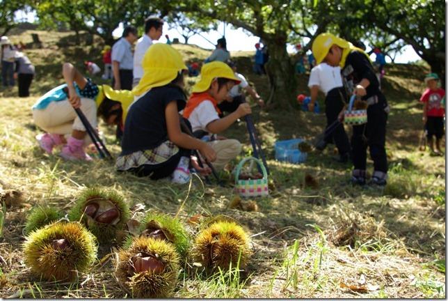 名古屋から1時間!岐阜県恵那市で秋の自然を満喫するお出かけスポットまとめ - 201210hyousi