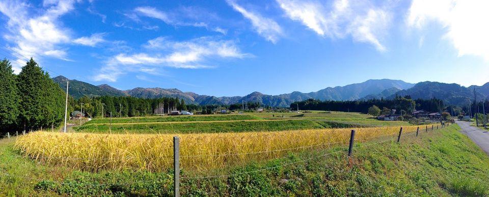 名古屋から1時間!岐阜県恵那市で秋の自然を満喫するお出かけスポットまとめ - img 20141019115304
