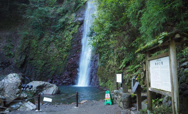 家族でのちょっとしたお出かけに最適。名古屋から岐阜まで行ける半日ドライブコース - IMG 1051 660x400