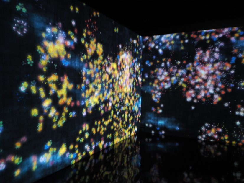「チームラボ★アイランド 踊る!アート展と、学ぶ!未来の遊園地」に行ってきました! - PB110008 827x620