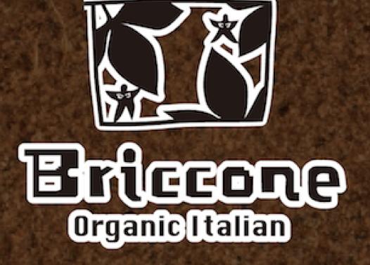 イタリア料理店Bricconeで新感覚イタリアン「ソイタリアン」がスタート - img 117199 1