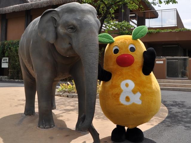 今週末のお出かけに最適なのはここ!東山動物園が再開! - 819b5fc78131ca5c3d32a41a707b0ce0