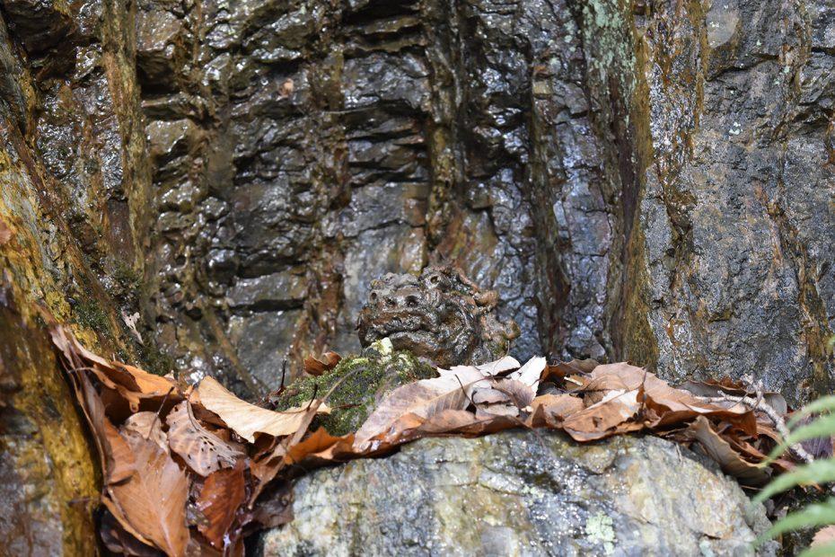 まだ間に合う!2017年初詣に犬山市「桃太郎神社」でシュールな世界観を楽しむ! - DSC0822 930x620
