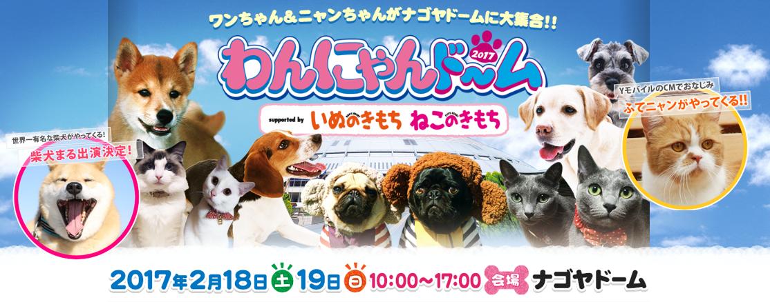 趣味が広がる!交流の輪ができる!名古屋で開催される2月のイベントまとめ - 1632efc40fcd851b96f6a3037572c50a