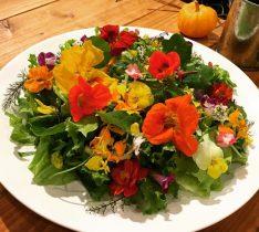 お花が食べられる!?自家農園で育てられたエディブルフラワーのカフェ - c93037849bd978d2ca46a2262bb70aec e1487823451684 234x210
