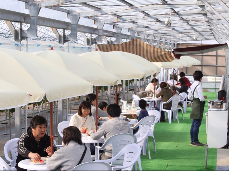 カフェスタイルが話題!静岡県磐田市のいちご狩りスポット『くりみ苺園』 - cafe2