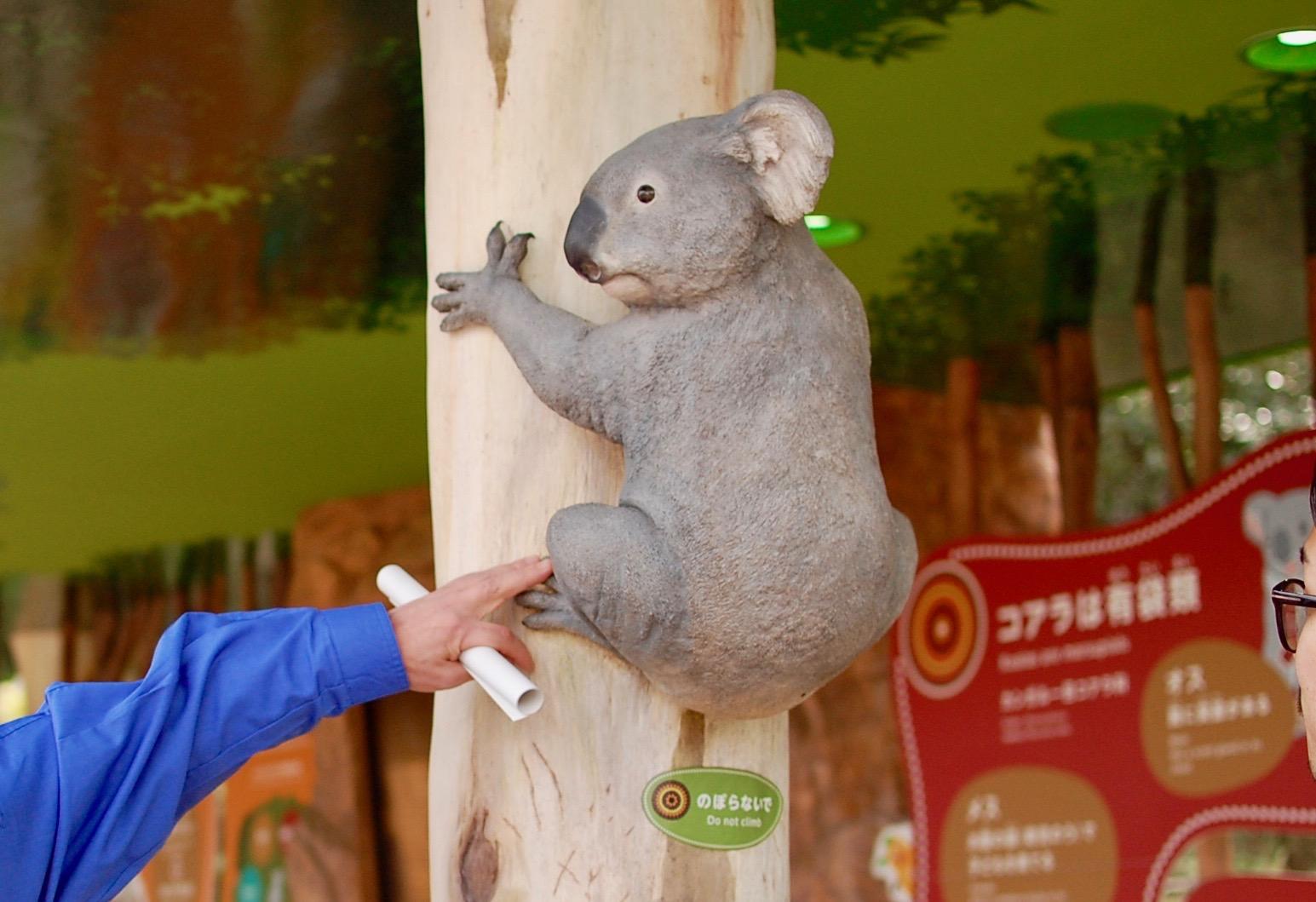 東山動物園の園長に聞いた!動物園をより楽しむためのプランとは - b8d0ac97cb1c1f17357fa23dbe37ece4