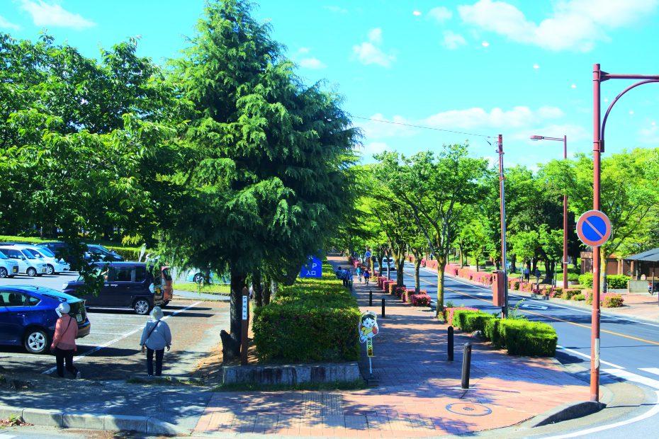 休日にゆったりランチを楽しみたい、豊田市のおしゃれカフェ「each(イーチ)」 - DSC 1948 930x620