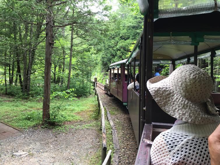 【名古屋から行ける避暑地・後編】グルメ、スイーツ、温泉。旅のフルコースをご提案 - unnamed 5