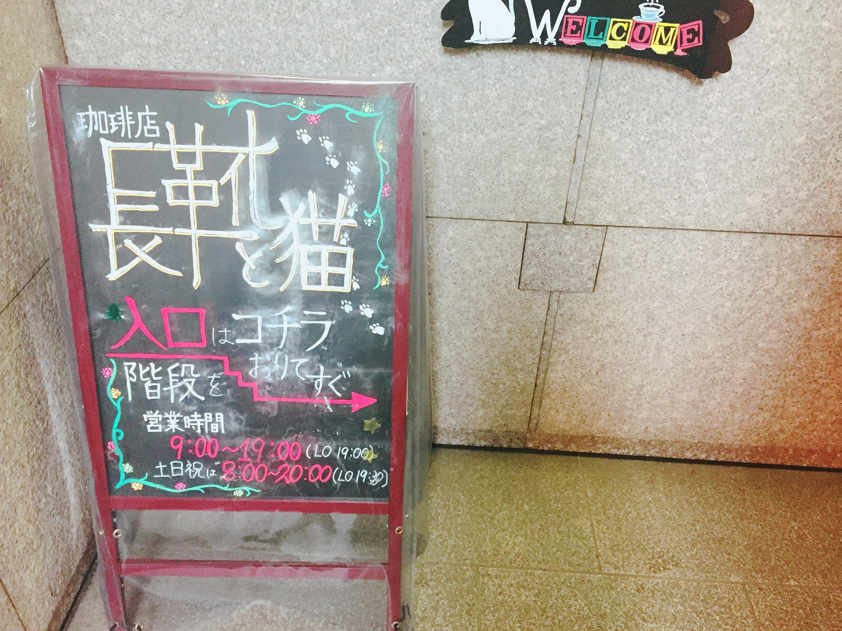 店内いっぱいに広がるおとぎ話の世界!珈琲店「長靴と猫」で優雅なランチタイムを - IMG 6542