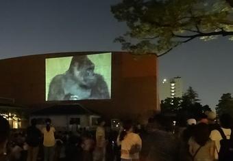 どうぶつ達の本当の姿が見れるかも!?「東山動植物園ナイトZOO&GARDEN」 - nightzoo