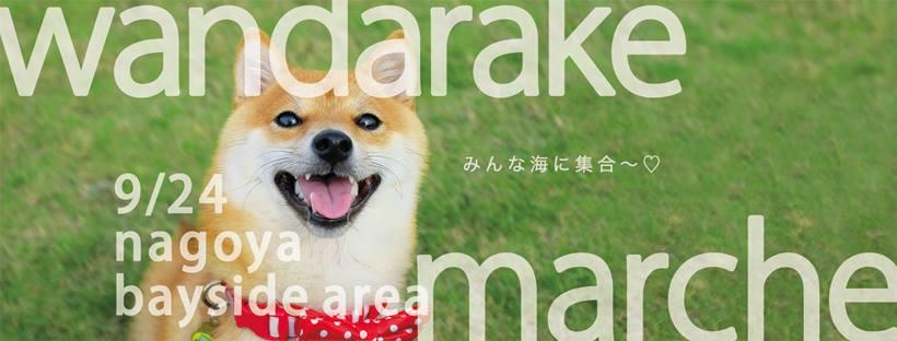 日本最大級の犬のマルシェイベント『わんだらけ』開催!当日は里親募集も実施 - 20431424 1943197995963493 2828940111766866538 n