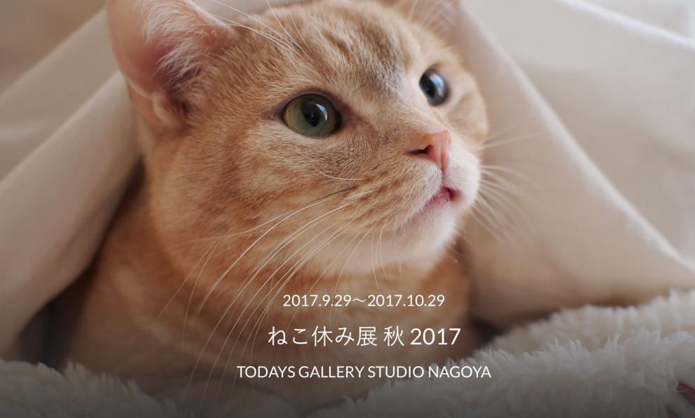 「かわいい」が止まらない!『ねこ休み展 秋2017』名古屋・新栄での開催が決定 - 5cb6e56b7b71c8fc5dbcae5716be1baa 990x595