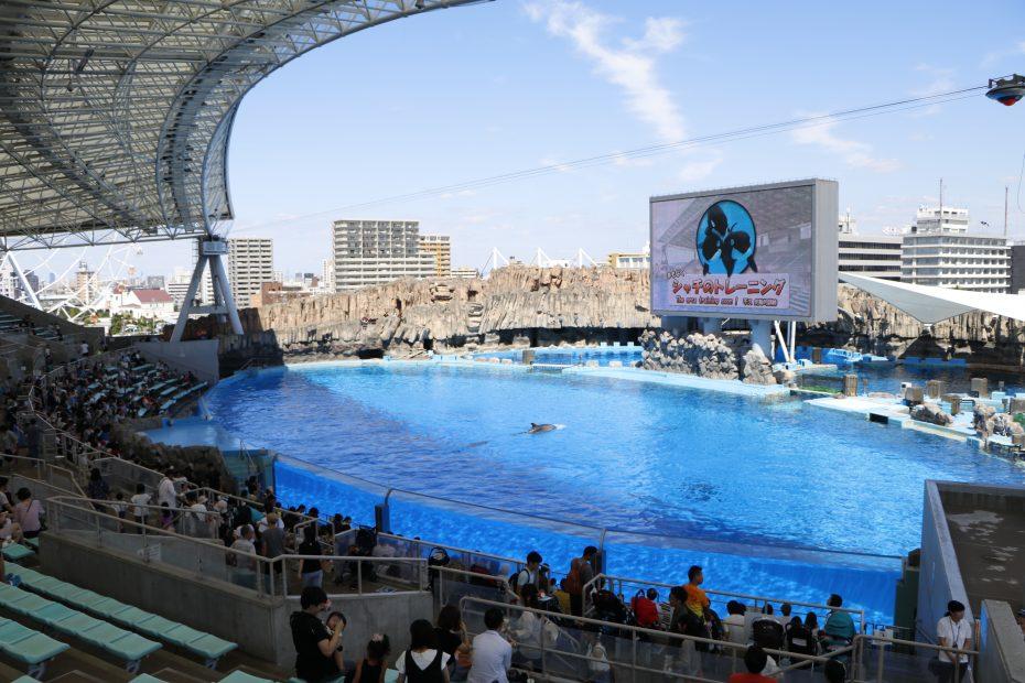 デート、家族で楽しめる『名古屋港水族館』!アクセス・料金・ランチ情報を紹介 - MG 8426 930x620