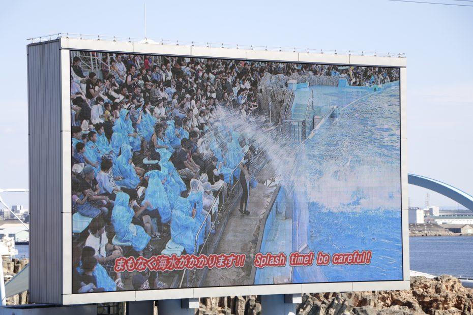 デート、家族で楽しめる『名古屋港水族館』!アクセス・料金・ランチ情報を紹介 - MG 8521 930x620
