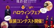 【Bリーグ】ドルフィンズ、ホーム開幕戦の様子&ハロウィンフェアの開催が決定! - 171012 topmain 1 210x110
