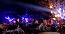 夜通し楽める野外映画フェス『夜空と交差する森の映画祭2017』レポート - IMG 0956 210x110