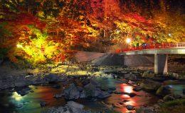 【2017年】名古屋からもアクセスしやすい!愛知県内の紅葉狩り穴場スポット5選 - ffafaddc43d41cf28d990f8d077caefd 260x160