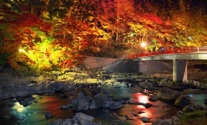 【2017年】名古屋からもアクセスしやすい!愛知県内の紅葉狩り穴場スポット5選 - ffafaddc43d41cf28d990f8d077caefd 660x400