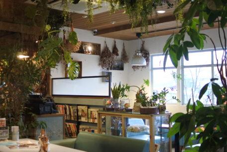 ボタニカルなカフェで心地の良いひと時を。岡崎で大人気の『ブルーブルーカフェ』