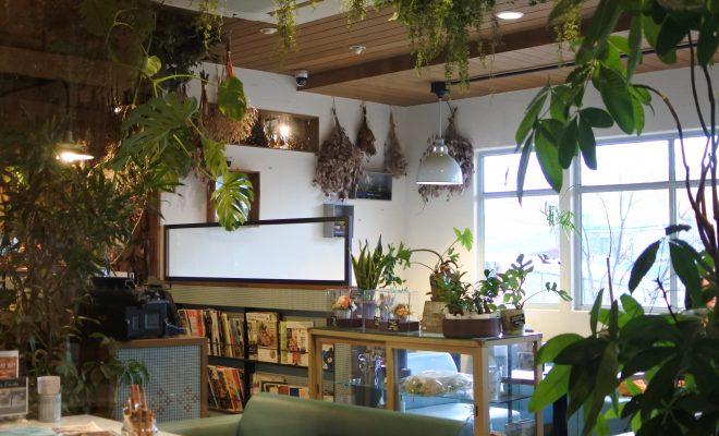 ボタニカルなカフェで心地の良いひと時を。岡崎で大人気の『ブルーブルーカフェ』 - DSC 0912 660x400