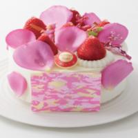 【2017】シーン別で選ぶ!名古屋タカシマヤのおすすめクリスマスケーキをご紹介